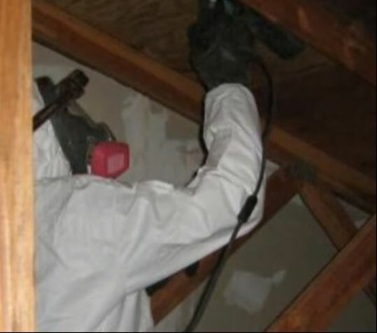 Mold Cleanup in Basement Hero Mold Removal Newport News, VA